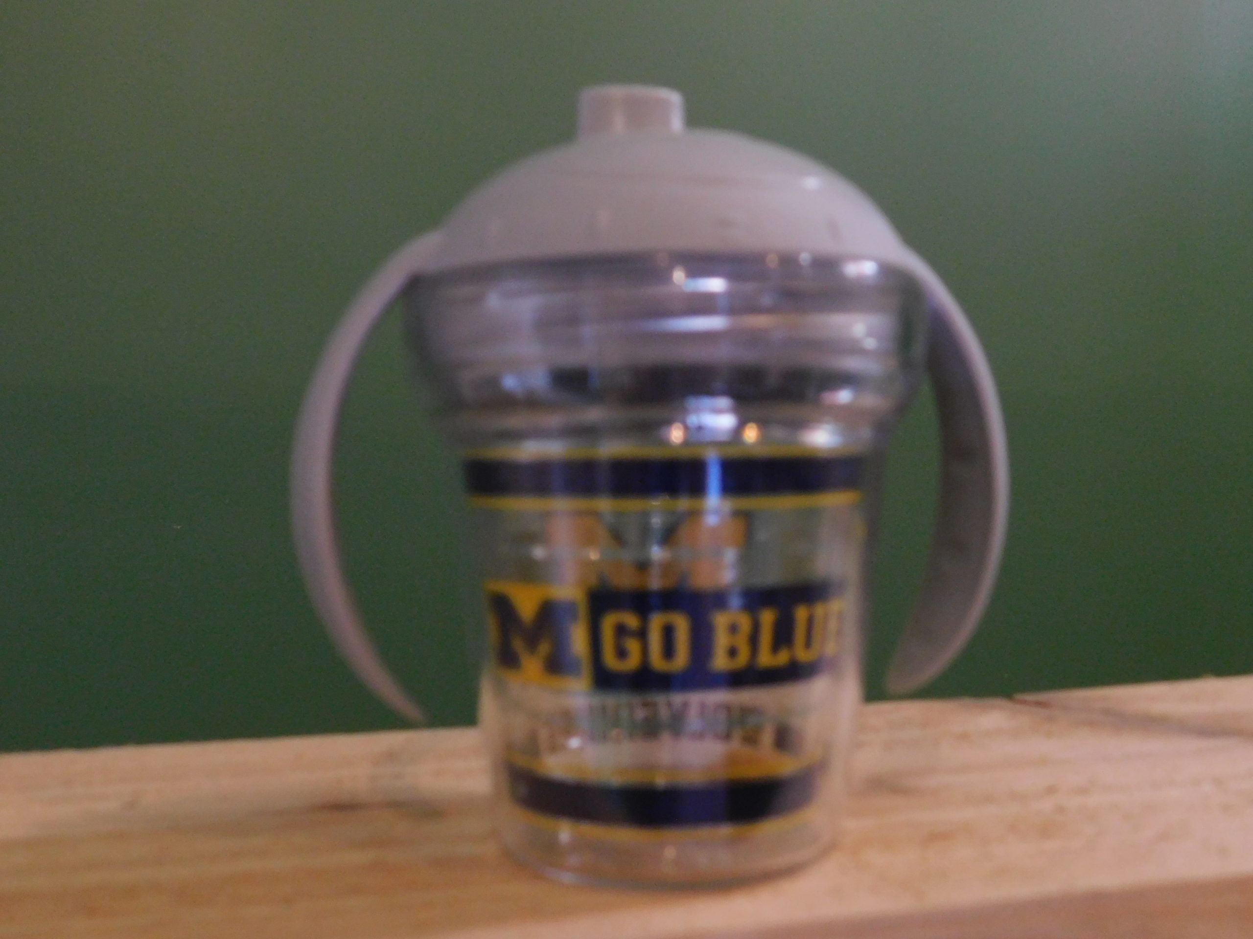 Michigan Sippy Cup